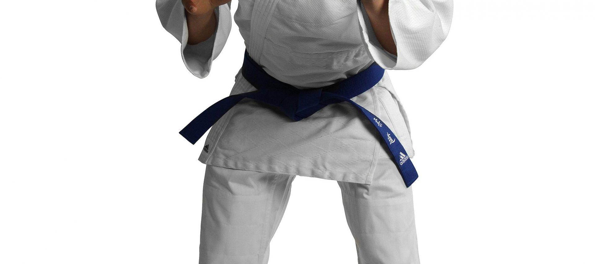 purchase cheap 4ee00 e01da adidas kimono de judo 350 club