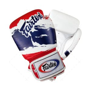 Gants de boxe Fairtex THAI PRIDE