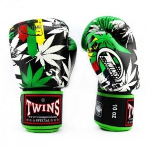 Gants de boxe TWINS SPECIAL Grass