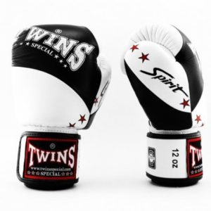 Gants de boxe TWINS SPECIAL Spirit