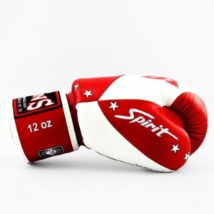 Gants de boxe TWINS SPECIAL Spirit rouge